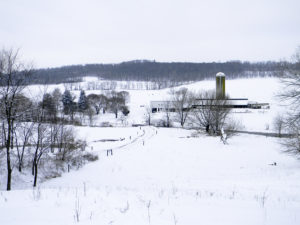 winter-farm